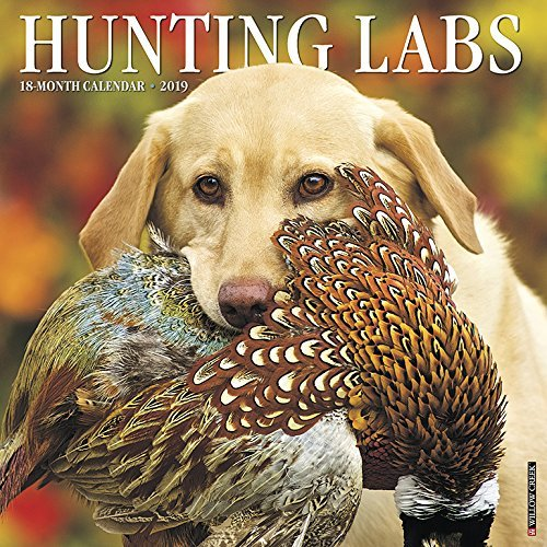 Hunting Labs 2019 Wall Calendar