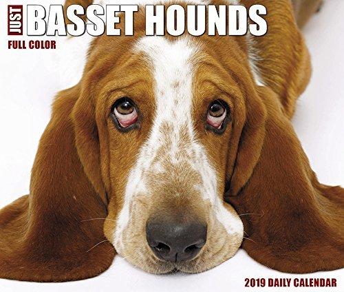 Just Basset Hounds 2019 Box Calendar