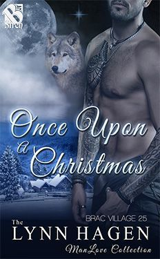 Once Upon a Christmas (Brac Village #25)