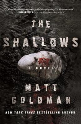 The Shallows (Nils Shapiro #3) - Matt Goldman