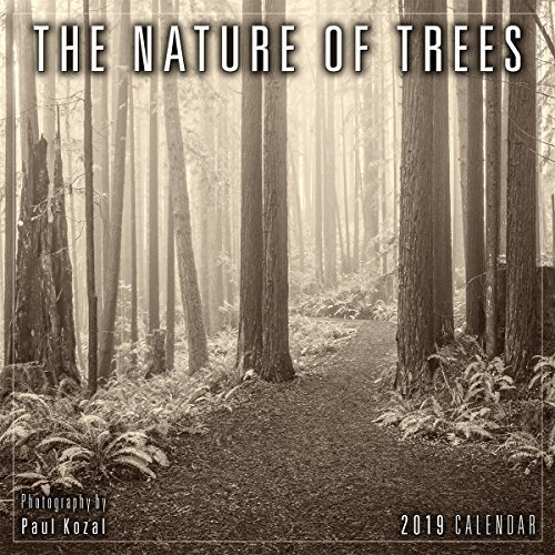 2019 the Nature of Trees Mini Calendar: By Sellers Publishing