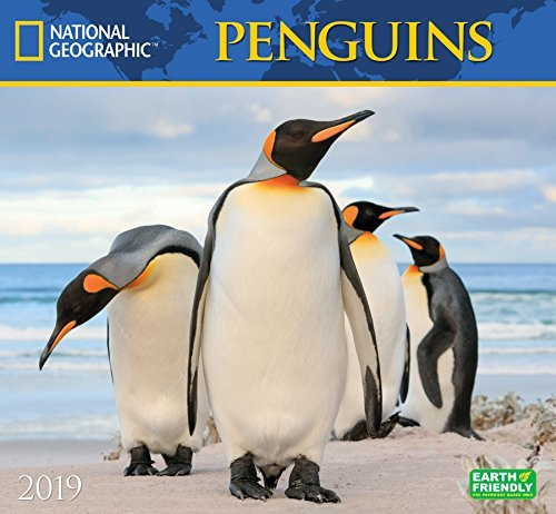 National Geographic Penguins 2019 Wall Calendar
