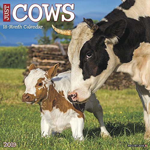 Just Cows 2019 Wall Calendar