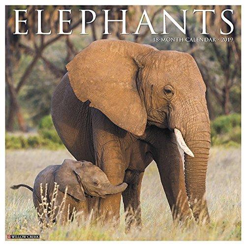 Elephants 2019 Wall Calendar