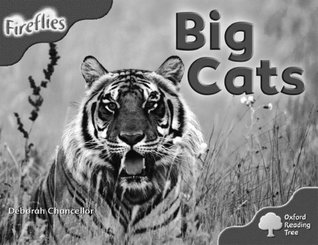 Big Cats (Oxford Reading Tree: Stage 4 (Pack A): More Fireflies)