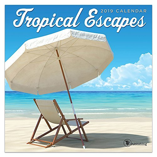 "Time Factory Tropical Escapes 7"" x 7"" January -December 2019 Mini Wall Calendar (19-2110)"