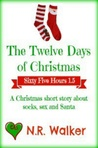 Sixty Five Hours: The Twelve Days of Christmas (Sixty Five Hours, #1.5)