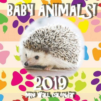 Baby Animals! 2019 Mini Wall Calendar