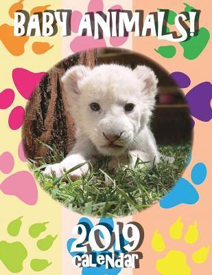 Baby Animals! 2019 Calendar