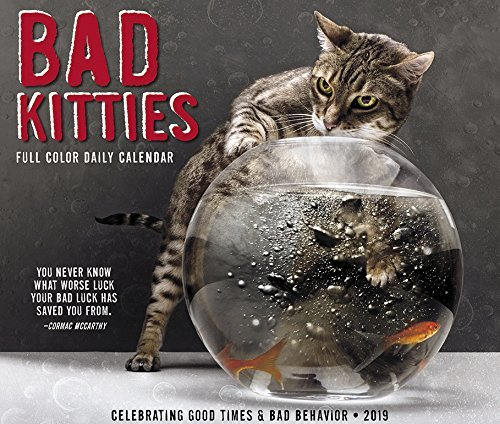 Bad Kitties 2019 Box Calendar