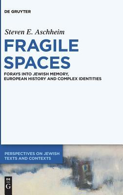 Fragile Spaces: Forays Into Jewish Memory, European History and Complex Identities