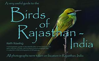Birds of Rajasthan, India: A comprehensive photographic guide to the birds you can expect to see when traveling around Rajasthan, India.
