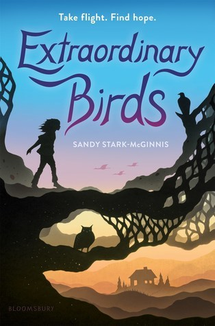 Image result for extraordinary birds sandy stark-mcginnis