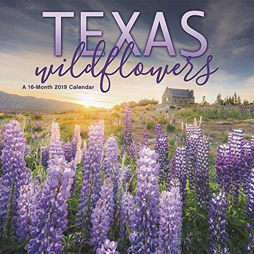 2019 Texas Wildflowers Wall Calendar