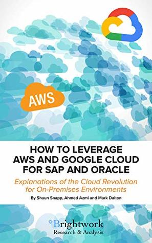 How to Leverage AWS and Google Cloud for SAP and Oracle: Explanations of the Cloud Revolution for On-Premises Environments