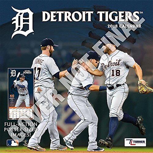 Detroit Tigers 2019 12x12 Team Wall Calendar