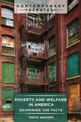 Poverty and Welfare in America: Examining the Facts