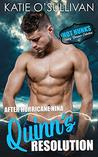 After Hurricane Nina: Quinn's Resolution: (Hot Hunks-Steamy Romance Collection, Book 5)