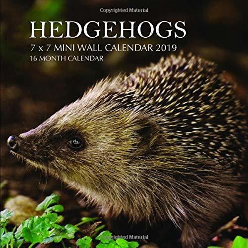 Hedgehogs 7 x 7 Mini Wall Calendar 2019: 16 Month Calendar