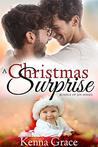 A Christmas Surprise (Bundle of Joy #3)
