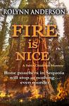 Fire is Nice