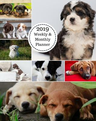 2019 weekly and monthly planner puppies collage daily organizer to