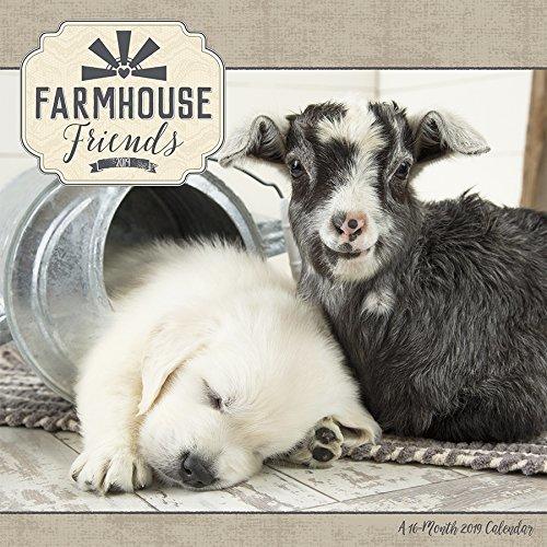 2019 Farmhouse Friends Wall Calendar