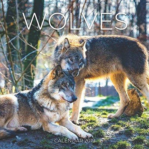 Wolves Calendar 2019: Mini Wall Calendar Wolf Photography 12 Month Calendar
