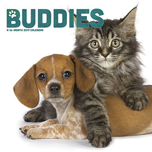 2019 Buddies Wall Calendar
