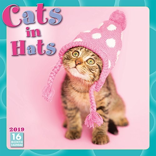 Cats in Hats 2019 Wall Calendar