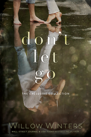 Don't Let Go by Willow Winters