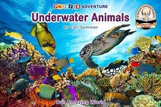 Underwater Animals (Non-Fiction Reader Book 19)