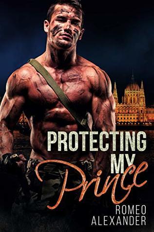 Protecting My Prince