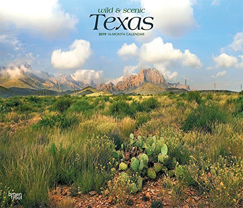 Texas, Wild & Scenic 2019 12 x 14 Inch Monthly Deluxe Wall Calendar, USA United States of America Southwest State Nature