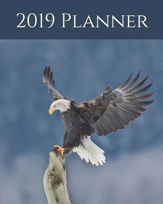 2019 Planner: Weekly Planner & Monthly Calendar - Desk Diary, Journal, Bald Eagle, Alaskan Eagle, Alaska, North American Wildlife, Raw Nature, Eagles, Birds