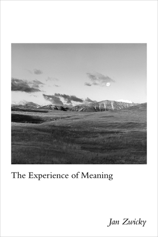 The Experience of Meaning