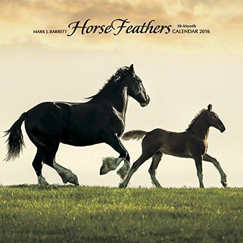 2016 Horse Feathers Wall Calendar
