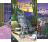 The Big Kitty Sunny Amp Shadow Mystery 1 By Claire Donally border=
