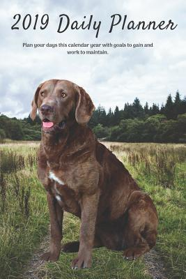 2019 Daily Planner Plan Your Days This Calendar Year with Goals to Gain and Work to Maintain.: Cute Chesapeake Bay Retriever Dog Appointment Book for Hourly, Weekly, Monthly Planning 6am - 8pm, Page Space for Tracking Notes & To-Do List: 6 X 9 In, 365 Pgs