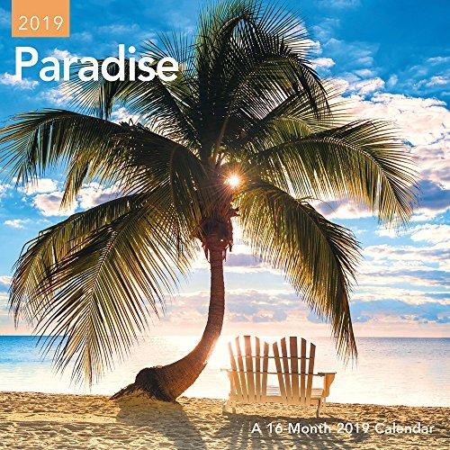 Paradise Mini Wall Calendar (2019)