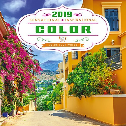 2019 Color Your World Wall Calendar