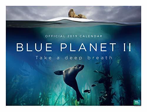 BBC Blue Planet Deluxe Official 2019 Calendar - Oversize Wall Calendar Format