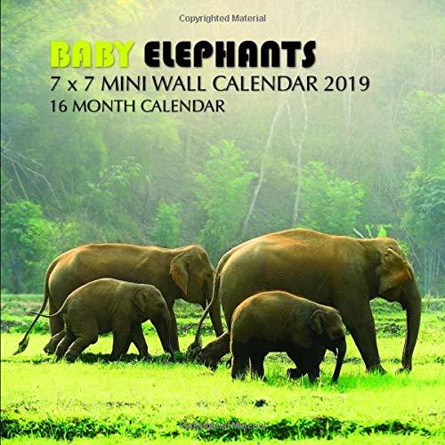 Baby Elephants 7 x 7 Mini Wall Calendar 2019: 16 Month Calendar