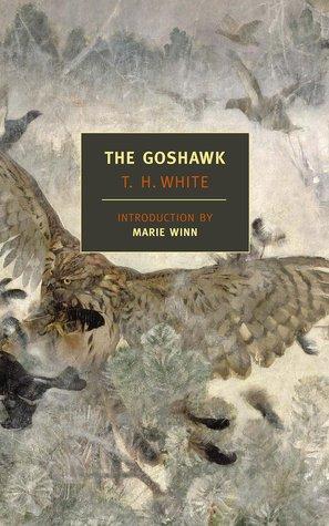 The Goshawk