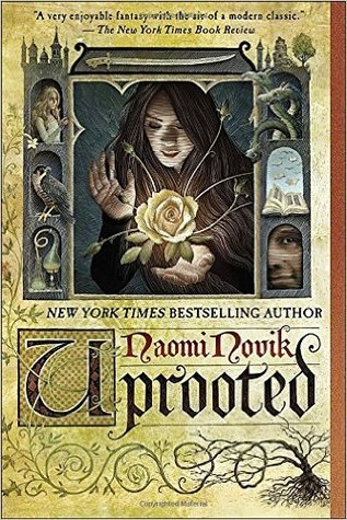 Uprooted (Temeraire) Paperback – 1 Mar 2016 by Naomi Novik (Author)