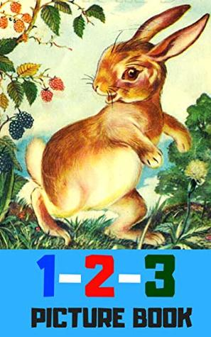 1 2 3 picture book: Number for kid and song (book for kids)