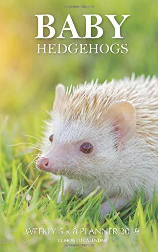 Baby Hedgehogs Weekly 5 x 8 Planner 2019: 12 Month Calendar