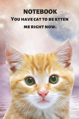 Notebook You Have Cat to Be Kitten Me Right Now: Funny & Cute Ginger Tabby & Pun: Gift Journal for Diary Keeping, Fitness Tracking, Classwork, Compositions, Homework, Planning, Listing, School Notes, Lists & More: 6 X 9 in (15.2 X 22.9 CM) 120 Pages