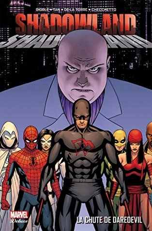 Shadowland : La chute de Daredevil