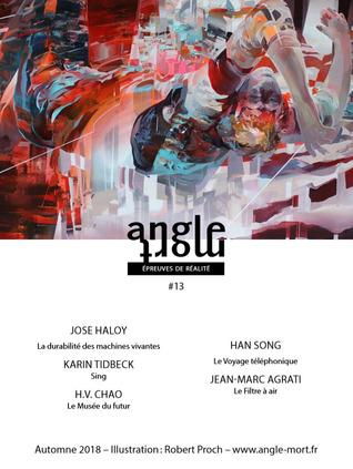 Angle Mort #13